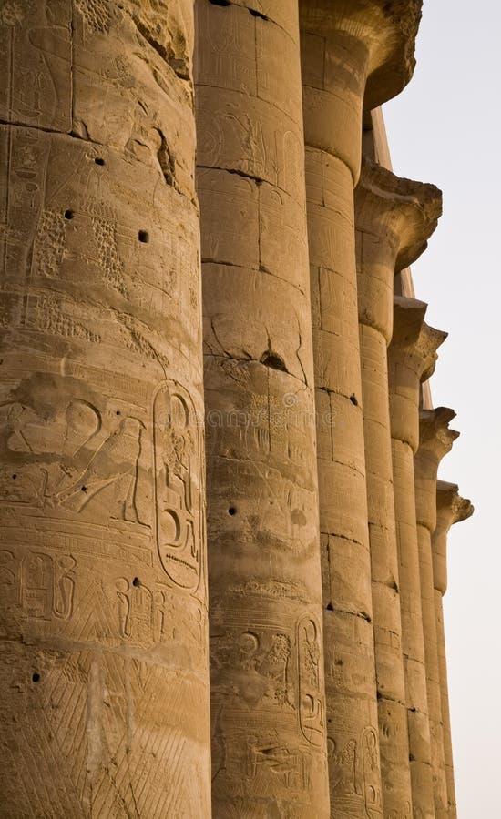 Kolumny przy Luxor świątynią zdjęcie royalty free