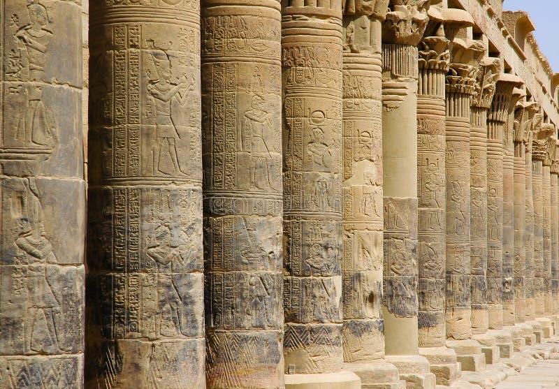 Kolumny w świątyni Philae zdjęcie stock