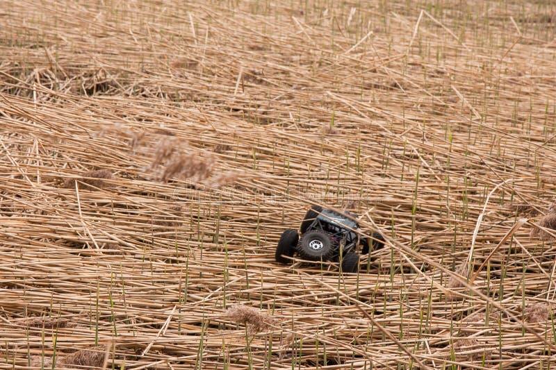 Kolyazin Moskvaregion/rysk federation - Maj 1 2014: För Vaterra för RC-bilcrowler flyttningar tvilling- hammare över ett hinder arkivfoton