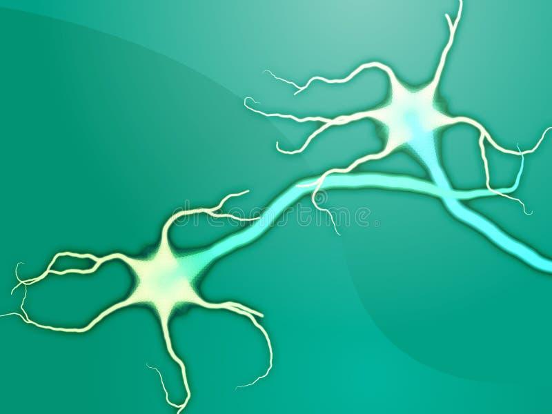 komórek nerwu neuron royalty ilustracja