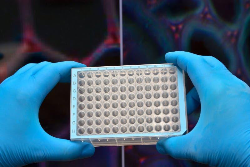 Komórek technologie w biologicznym badaniu obraz stock