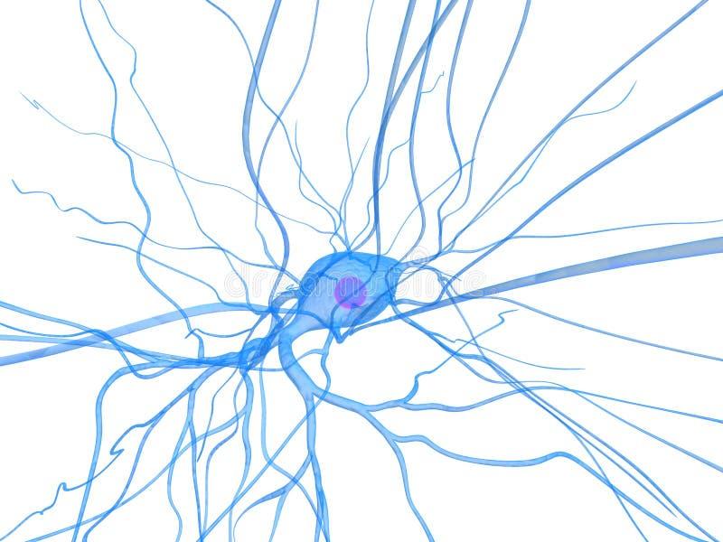 komórka nerw ilustracja wektor