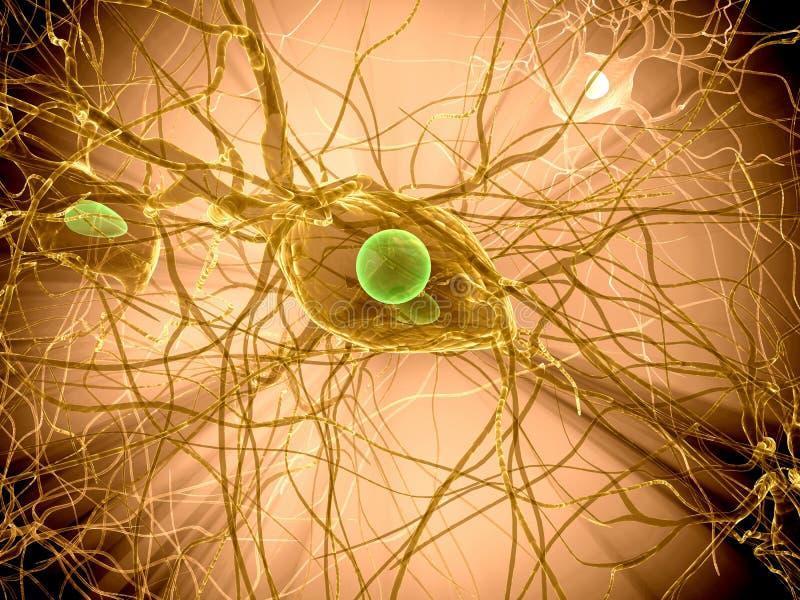 komórka nerw royalty ilustracja