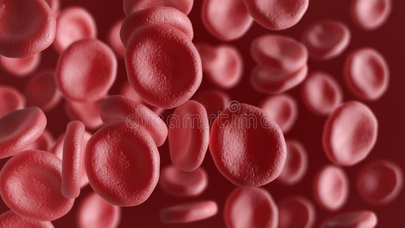 Komórki krwi odizolowywać na czerwonym tle ilustracja wektor