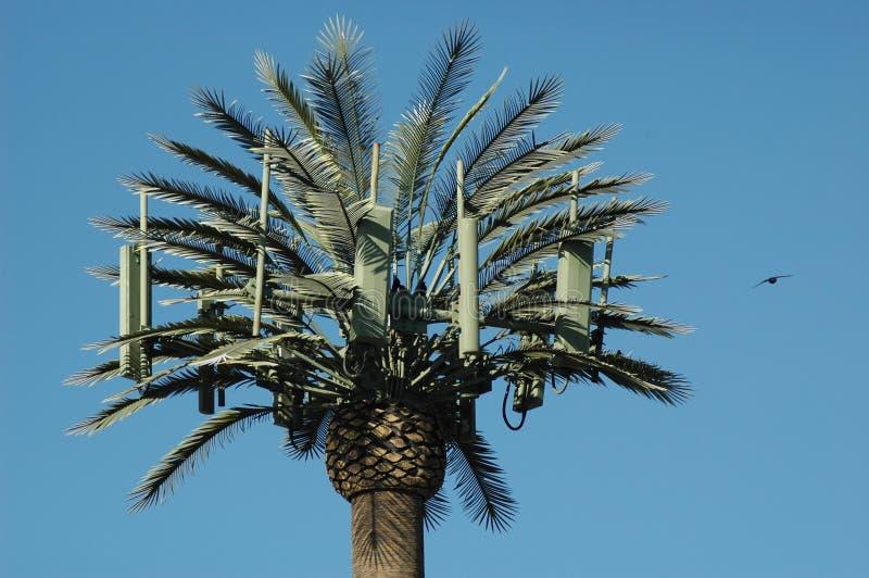 komórki ptaka dłonie wieży drzewo obrazy royalty free