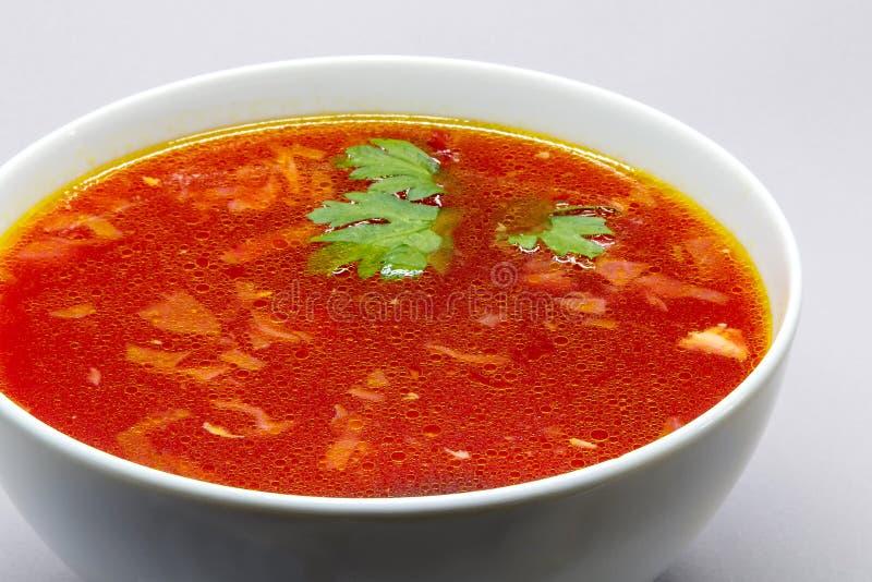 Kom borscht stock afbeelding