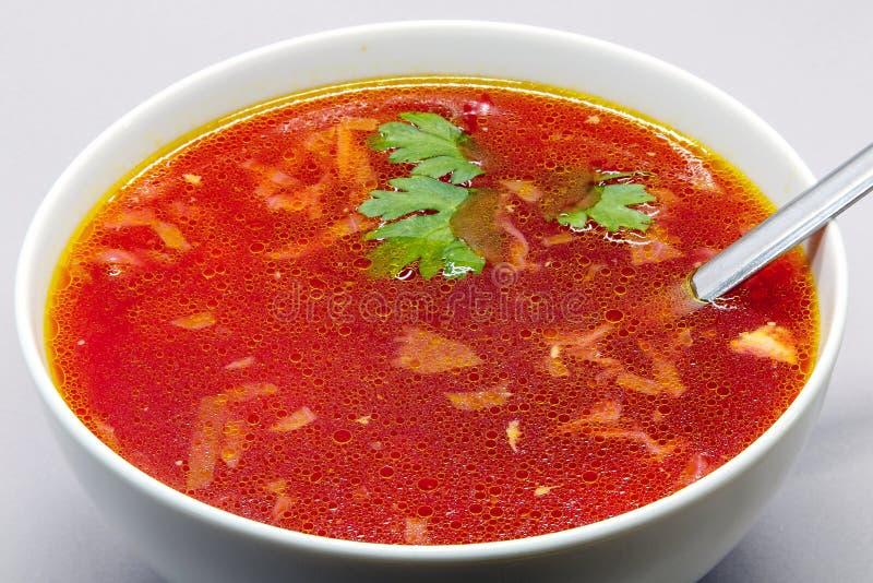 Kom borscht royalty-vrije stock afbeelding