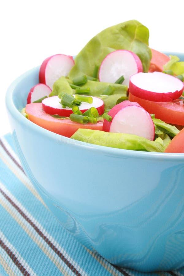 Kom salade stock fotografie