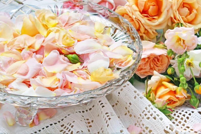 Kom van Roze Bloemblaadjes stock foto