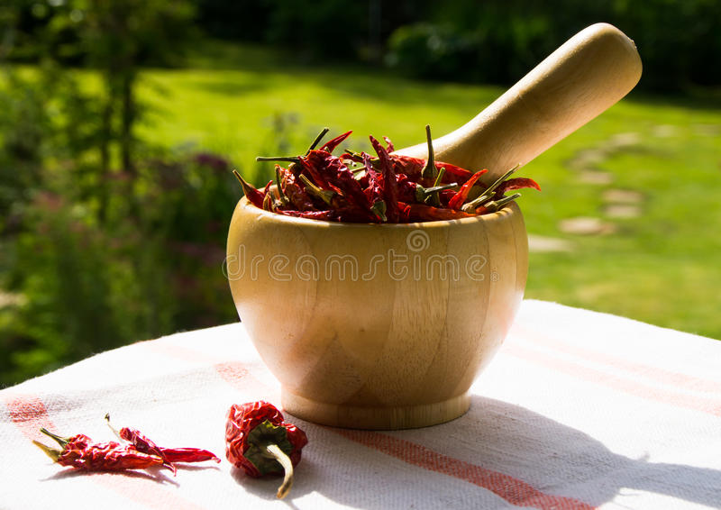 Kom van Spaanse peper stock afbeelding