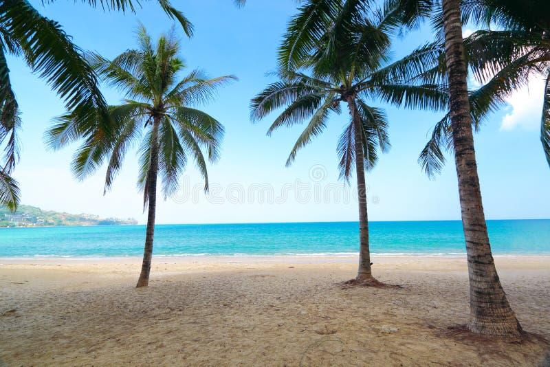 KoMaLa beach,PhuKet province,Thailand stock images