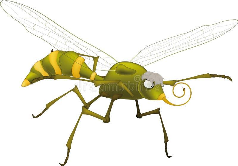 komar okropny ilustracji