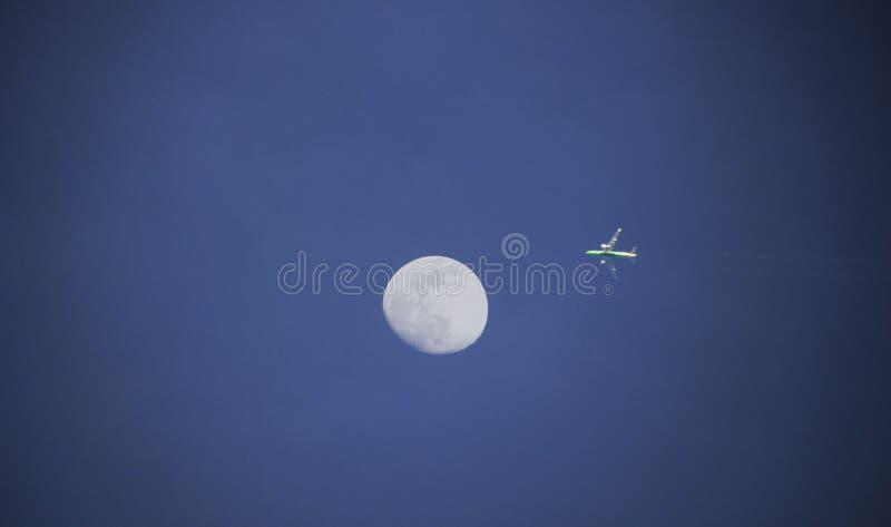 Komarnica księżyc fotografia royalty free