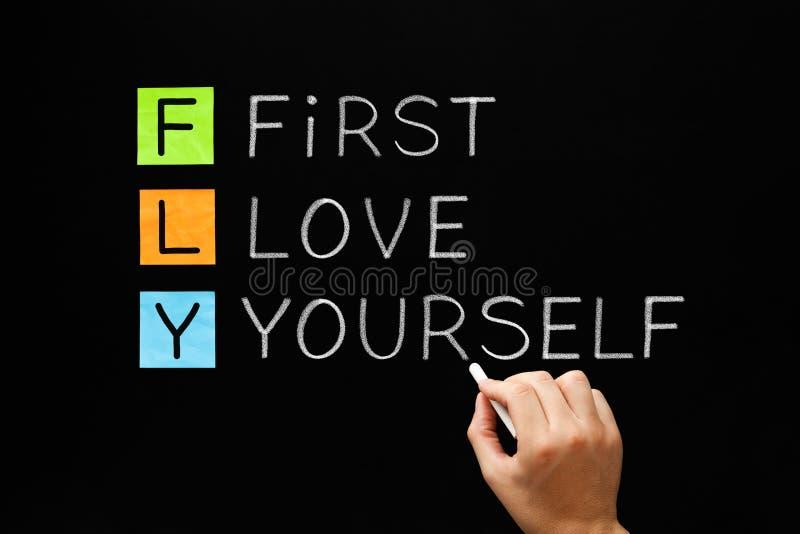 KOMARNICA - Pierwszy miłość akronimu pojęcie obrazy stock