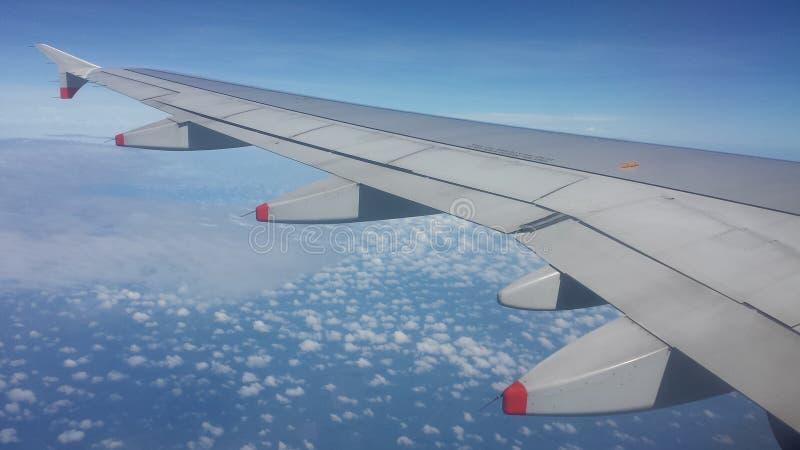 Komarnicy nieba domowy wakacje zdjęcie royalty free