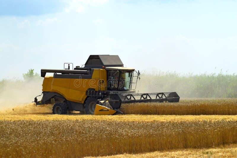 Download Kombain собирает на урожае пшеницы Сельскохозяйственная техника в поле Стоковое Изображение - изображение насчитывающей поле, аграрным: 81800593
