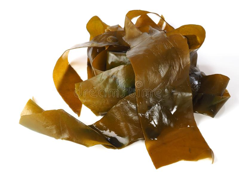 Kombu-Kelp - Alga Kombu lizenzfreies stockfoto