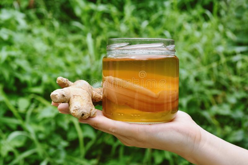 Kombucha herbata, Zdrowy fermentujący jedzenie, sekunda fermentował herbaty z organicznie imbirowym ziele zdjęcia royalty free