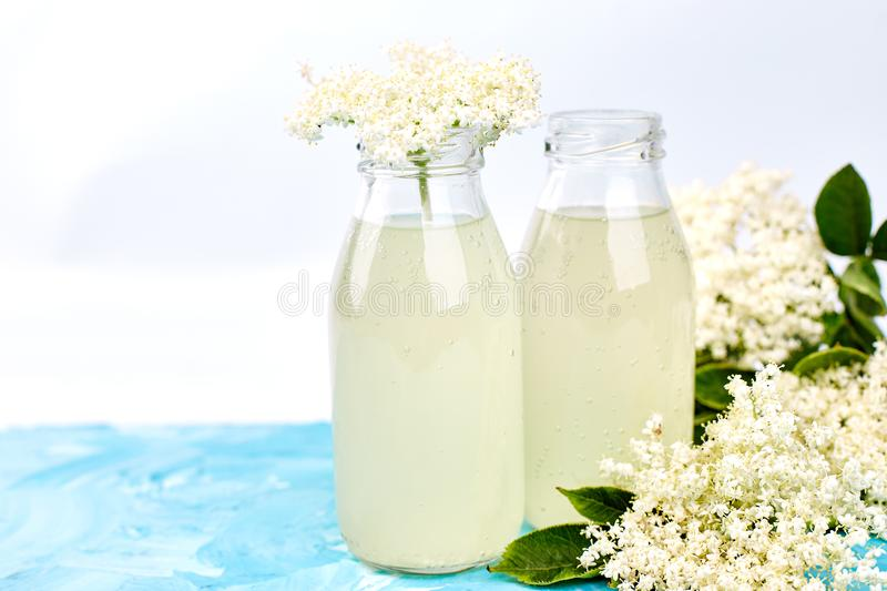 Kombucha tea with elderflower. Flower on blue background . Homemade fermented infused drink. Summer Healthy natural probiotic flavored drink. Copy space stock photos