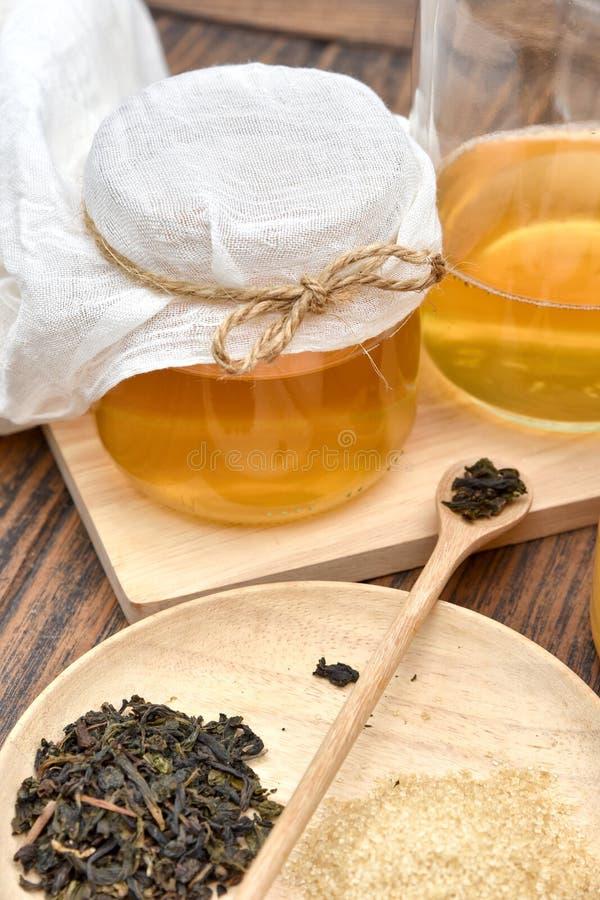 Kombucha tea leaves, Healthy fermented food, Probiotic nutrition drink. Kombucha tea leaves, Healthy fermented food, Probiotic nutrition drink for good balance royalty free stock images