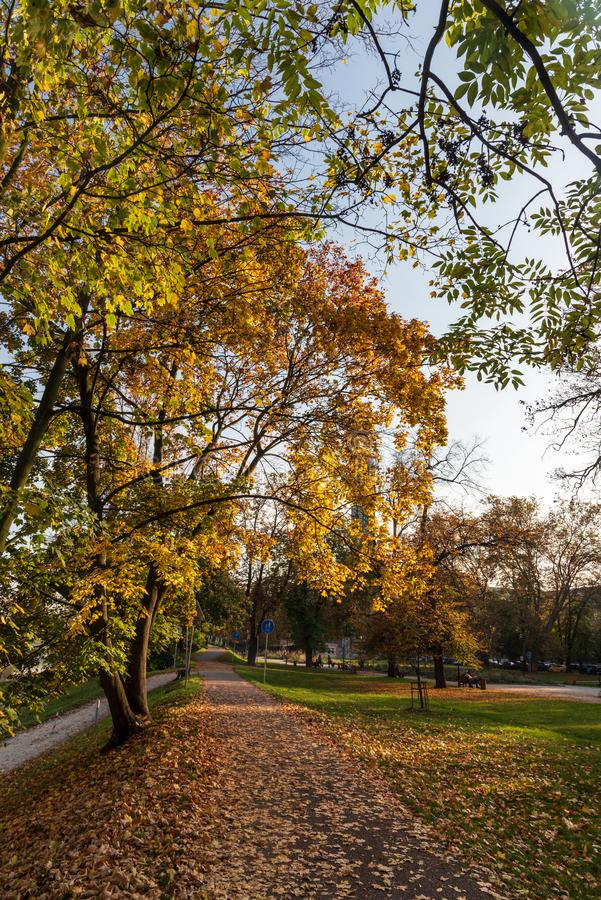 Komenskeho sady public park with colorful trees and fallen leaves in Ostrava city in Czech republic. During nice autumn day stock photo