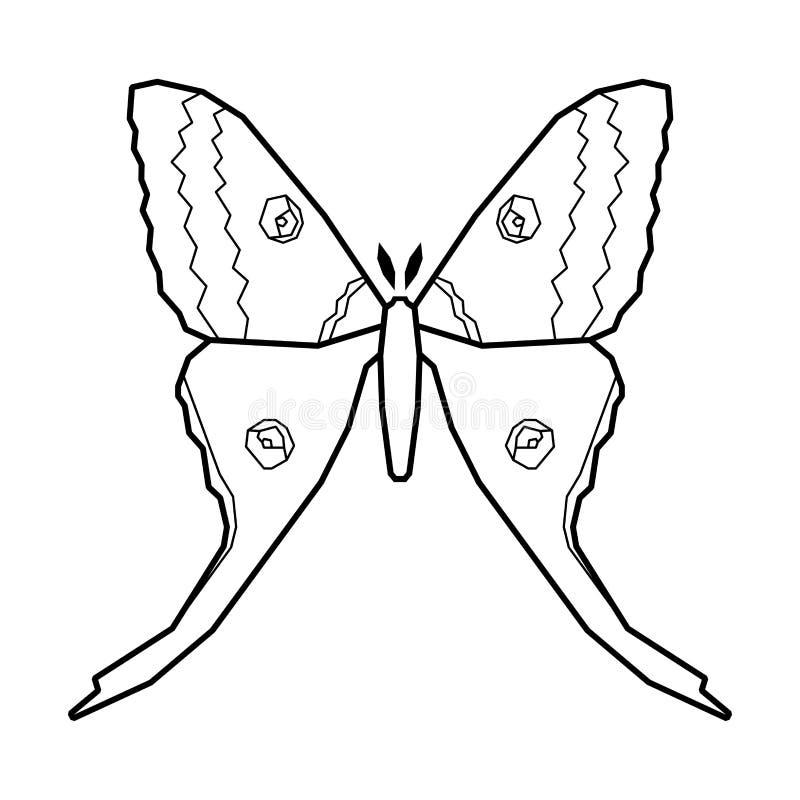 Komety ćma wektorowa ikona odizolowywająca na bielu femaleness ilustracji