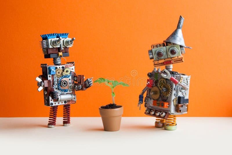 Komiczny dwa robota i zielonej roślina Ścienny pomarańcze tło obrazy stock