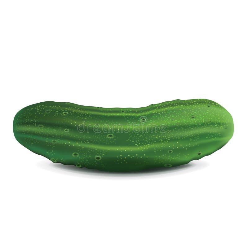 Komkommer stock illustratie