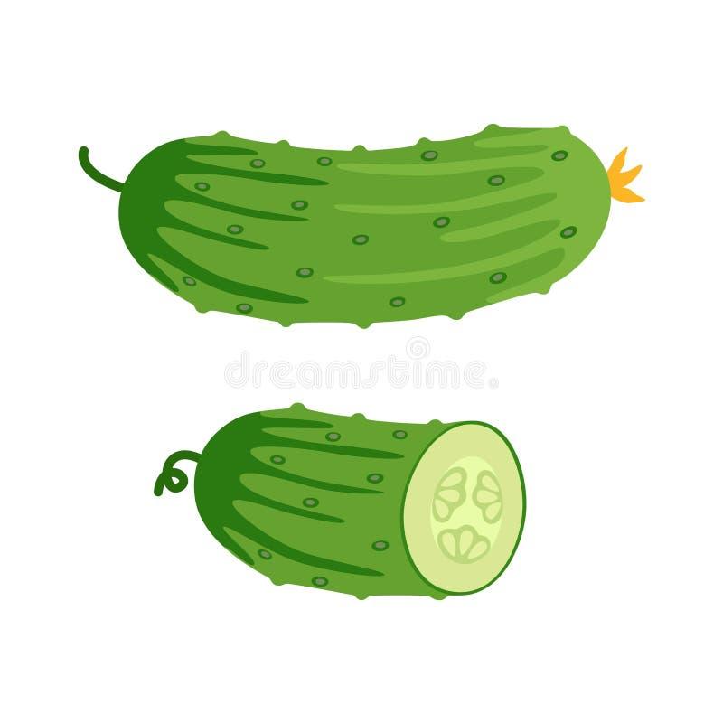 Komkommer en de helft van komkommer Vector illustratie vector illustratie