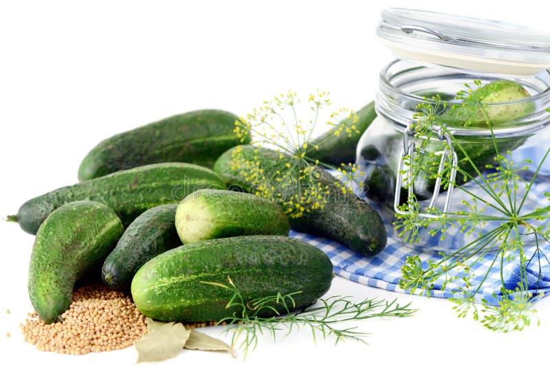 Komkommer en dillekruid voor het inblikken in kruik stock afbeeldingen