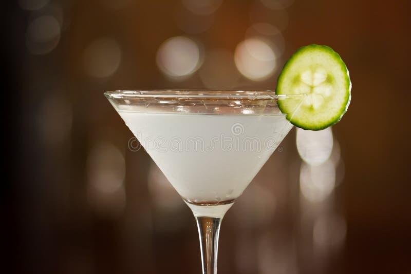 Komkommer martini stock afbeelding