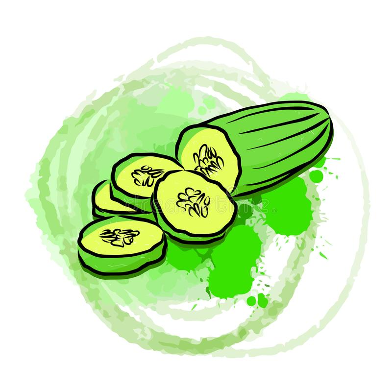 Komkommer op groene geschilderde achtergrond stock illustratie