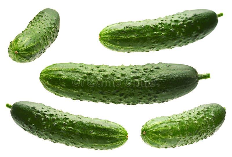 Komkommer op wit wordt geplaatst dat stock afbeeldingen
