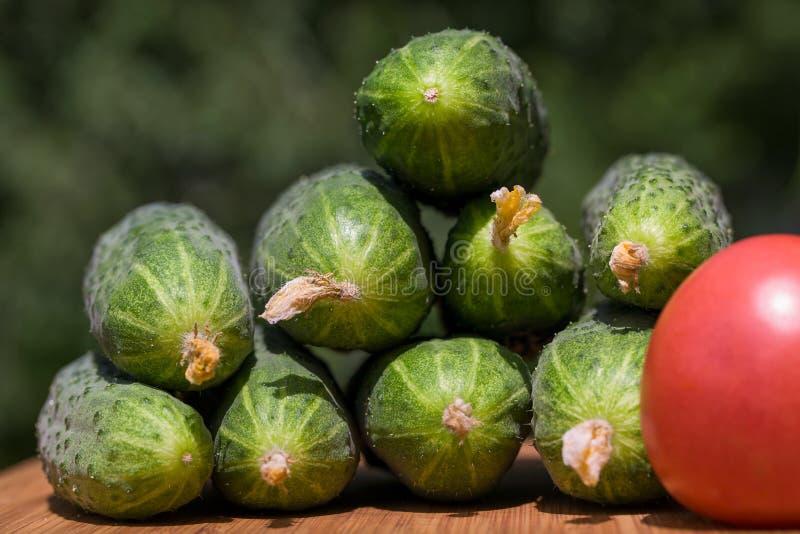 Komkommers en tomaat stock fotografie