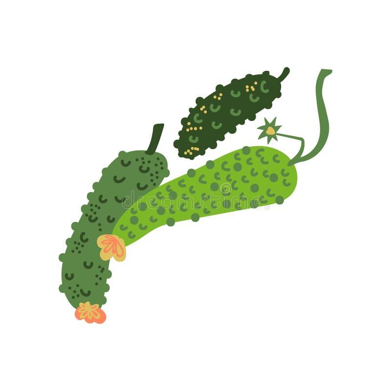 Komkommers Verse Groente, Organisch Voedzaam Vegetarisch Voedsel voor Gezonde voeding Vectorillustratie royalty-vrije illustratie