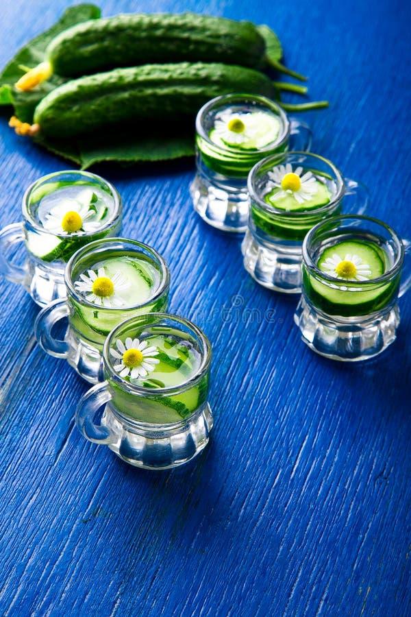 Komkommerwater in zes de kleine kruik van het metselaarglas op blauwe achtergrond rustic detox royalty-vrije stock afbeeldingen