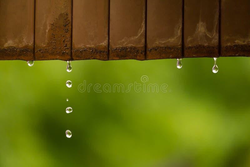 Kommande down för regnvattensmå droppar från det rostade metalltaket royaltyfria bilder