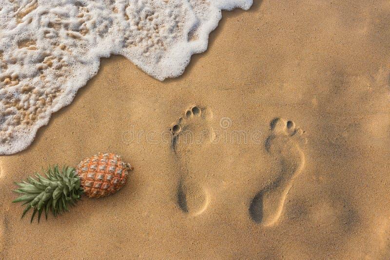 kommer riktiga dr?mmar Tropiska strand- och havsvågor Exotiskt aff?rsf?retag royaltyfri fotografi