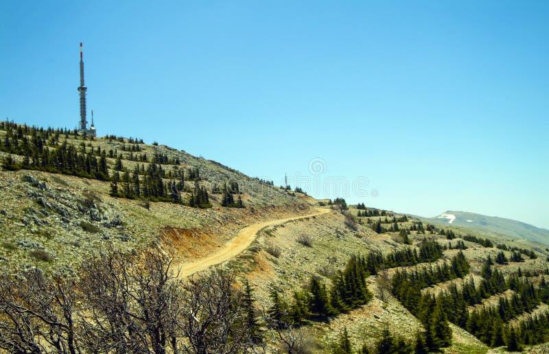 Kommunikationsmast på toppmötekanten av bergen för Shouf biosfärreserv, Libanon royaltyfri bild
