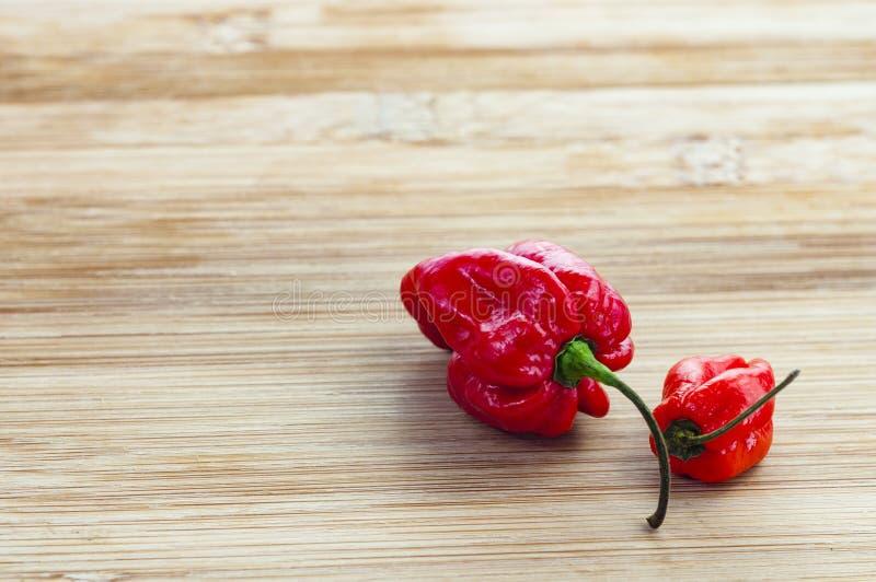 Komodo smoka chillies fotografia stock