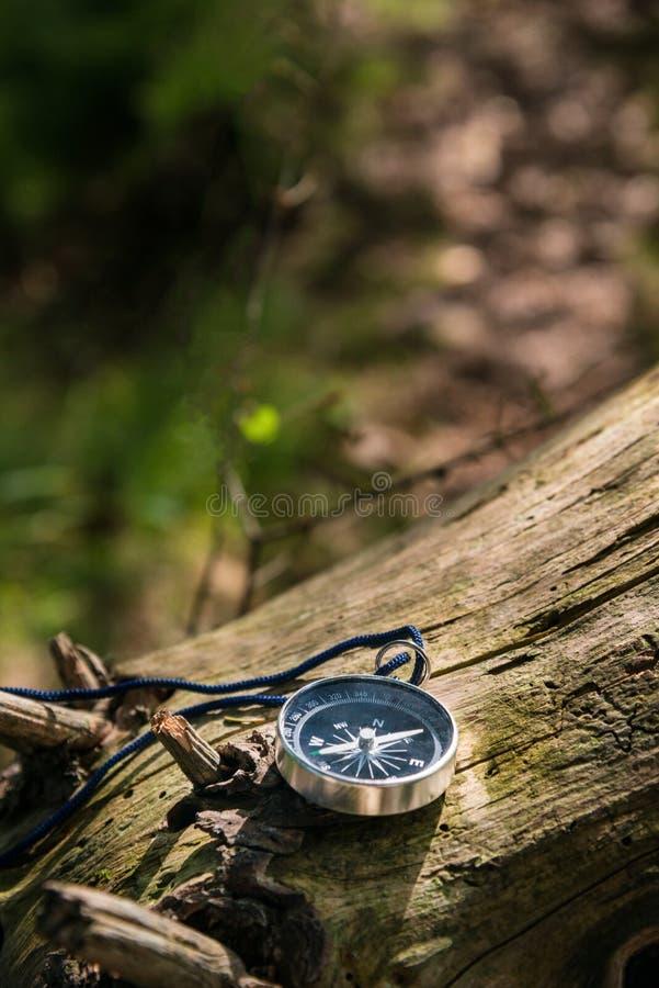 Kompas in het bos royalty-vrije stock afbeeldingen