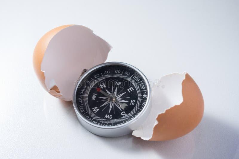 Kompas z łamaną jajeczną skorupą obraz stock