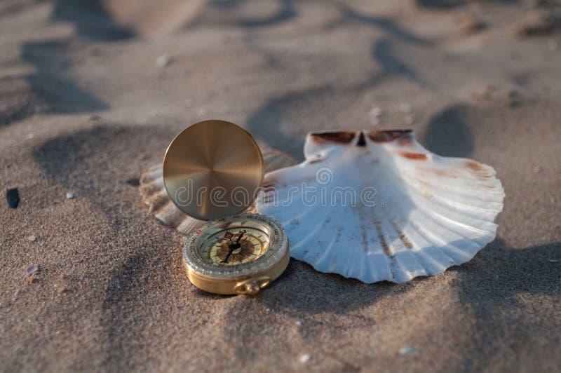 Kompass i skal royaltyfri fotografi