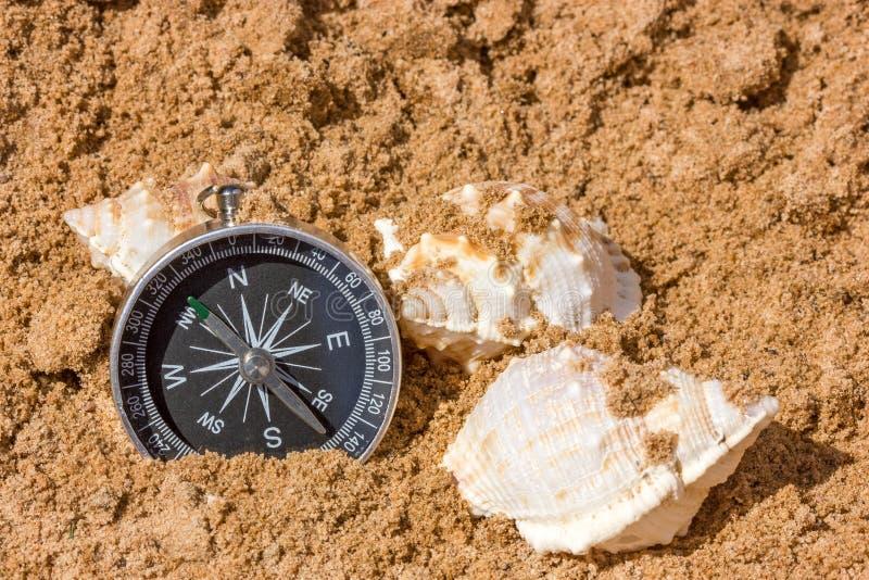 Kompass och snäckskal arkivbilder