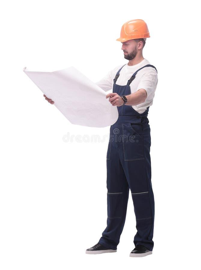 Kompetentny brygadiera budowniczy patrzeje rysunki Odizolowywaj?cy na bielu obrazy royalty free