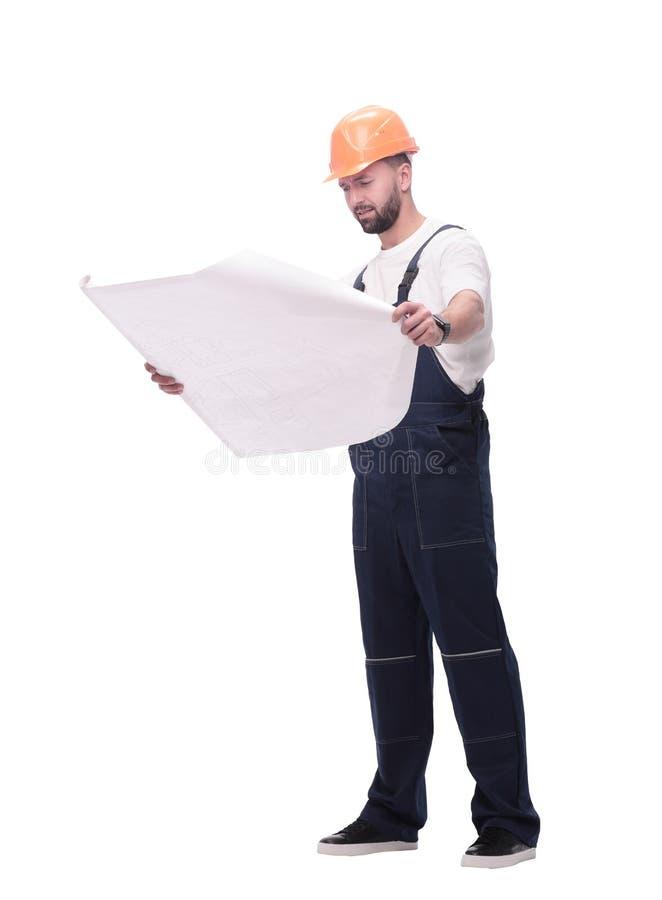 Kompetentny brygadiera budowniczy patrzeje rysunki Odizolowywaj?cy na bielu obrazy stock