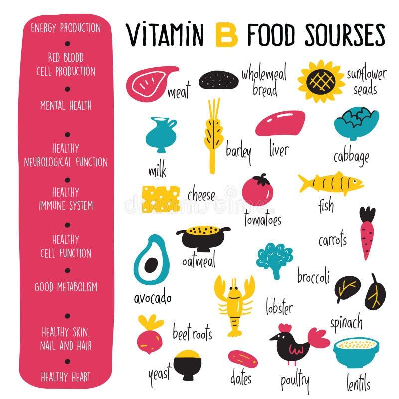 Komplex des Vitamins B Vektor-Karikatur infographics Plakat mit Illustration von Nahrungsquellen stock abbildung