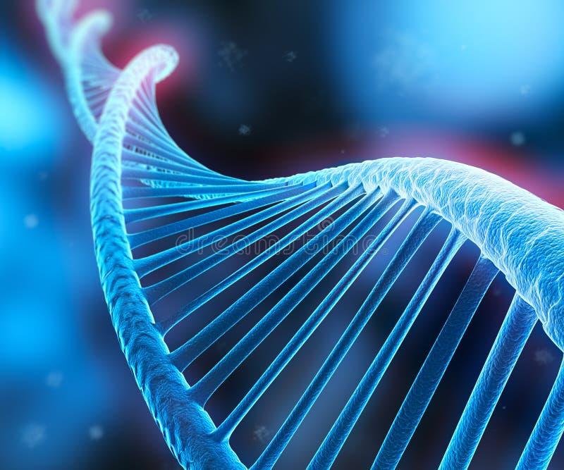 Komplexe DNA - medizinische Illustration 3D stock abbildung