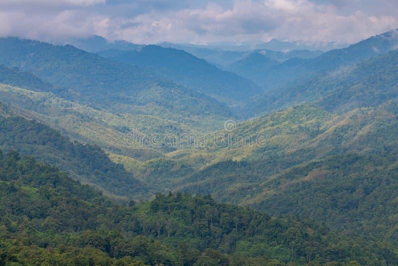 Komplexitet av berg- och dallandskapet och trädmångfald av skogen med härliga låga moln överst arkivbild