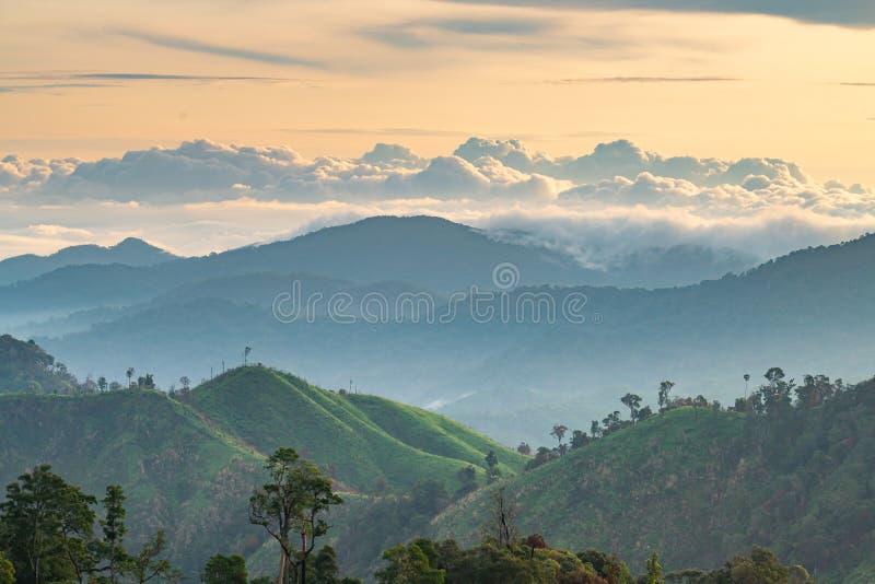 Komplexitet av berglandskapet och trädmångfald av skogen med guld- ljus för härlig morgon för låga moln överst - arkivbilder